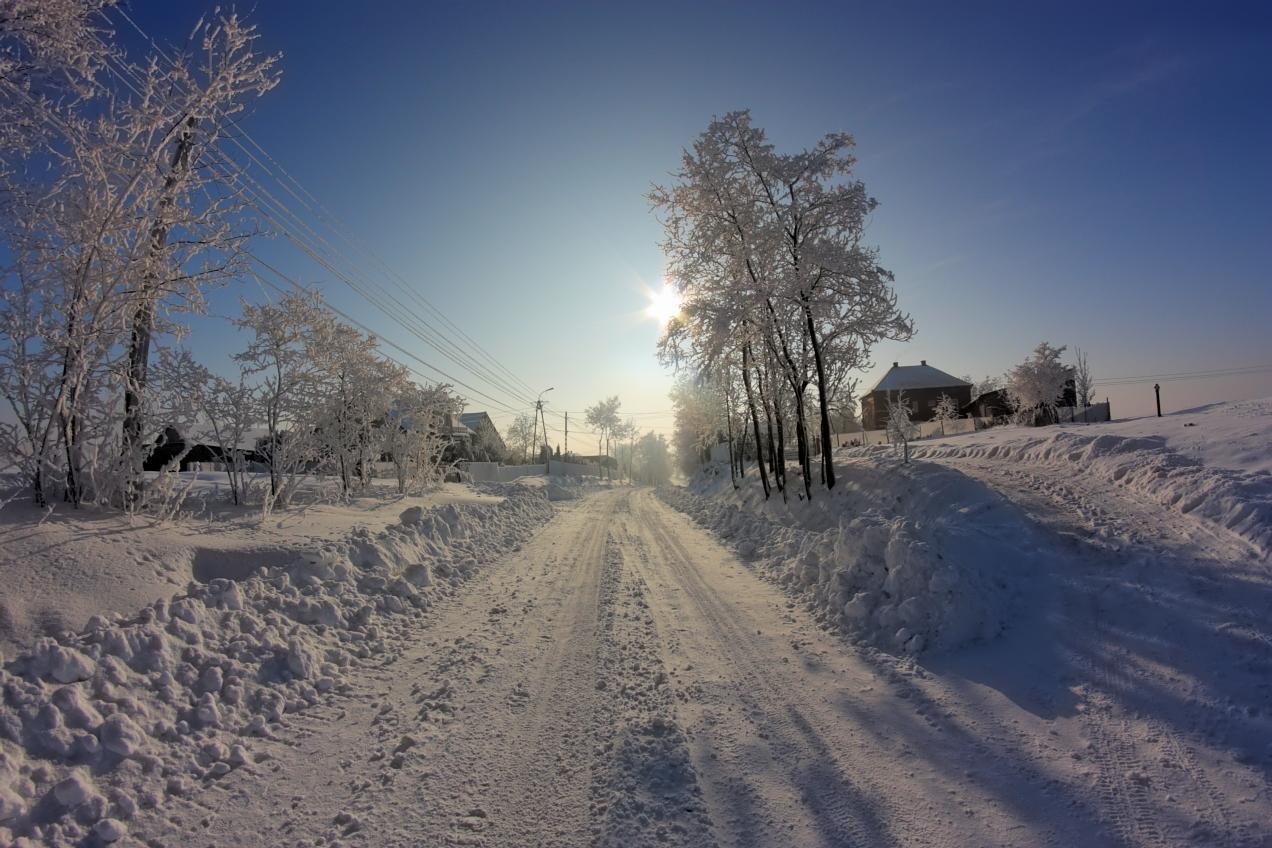 art 1 foto zima